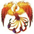Portrait de phoenix1291