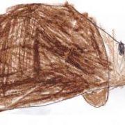 Portrait de cracotte